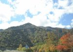 【車種から】ハイエースに関するブログ 秋の景色がきれいです