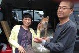 犬とハイエースに関するブログ バグネット(ハイエース網戸)をご希望のユーザーさんです