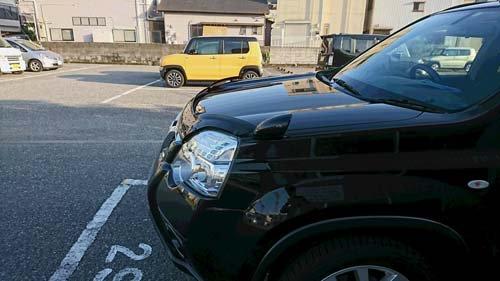 高知県KさんからT31エクストレイルにフロントプロテクターを装着した写真とコメントを頂きました【画像2】