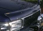 R50テラノ パーツ R50テラノ(M/C前)用フロントプロテクター(バグガード)