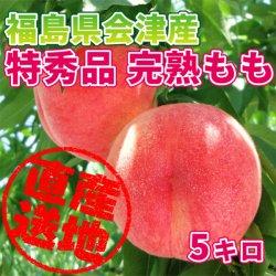 【送料無料】【極上のフルーツセレクション】会津産 桃 特秀品 約5kg(16玉前後) 匠の桃を産地直送もぎたてをお届けします【贈答用にも最適で…