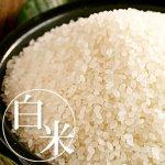 【定期購入】白米 継承米(特別栽培コシヒカリ)