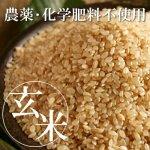 【定期購入】玄米 継承米氏郷 (無農薬コシヒカリ)