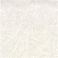 雲竜紙 白