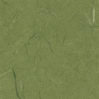 雲竜紙 緑
