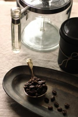 Brass Coffee Measuring Spoon - S