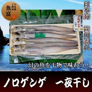 幻の深海魚!コラーゲンたっぷりの幻魚(ノロゲンゲ)干物