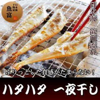 ハタハタ 干物 (大サイズ5〜8尾入り)