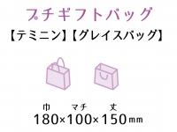 ●紙袋 テミニン・グレイスバッグ