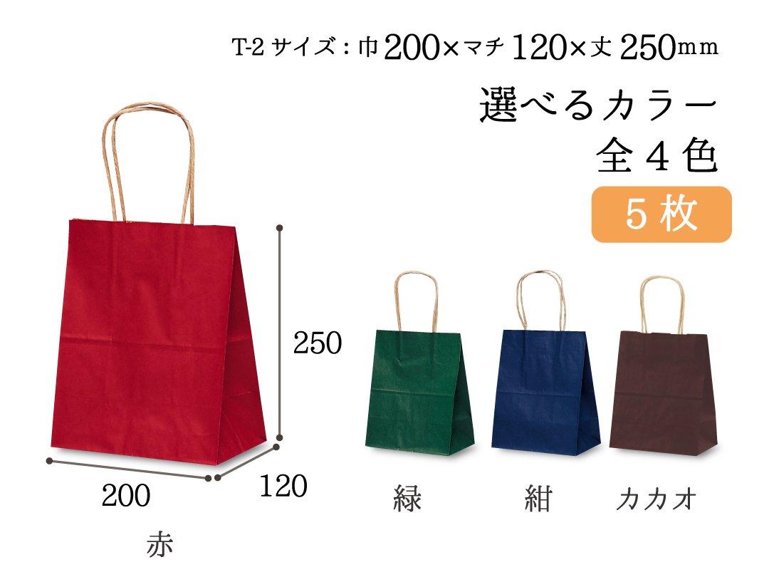 紙手提袋 T-2(カラー) 5枚