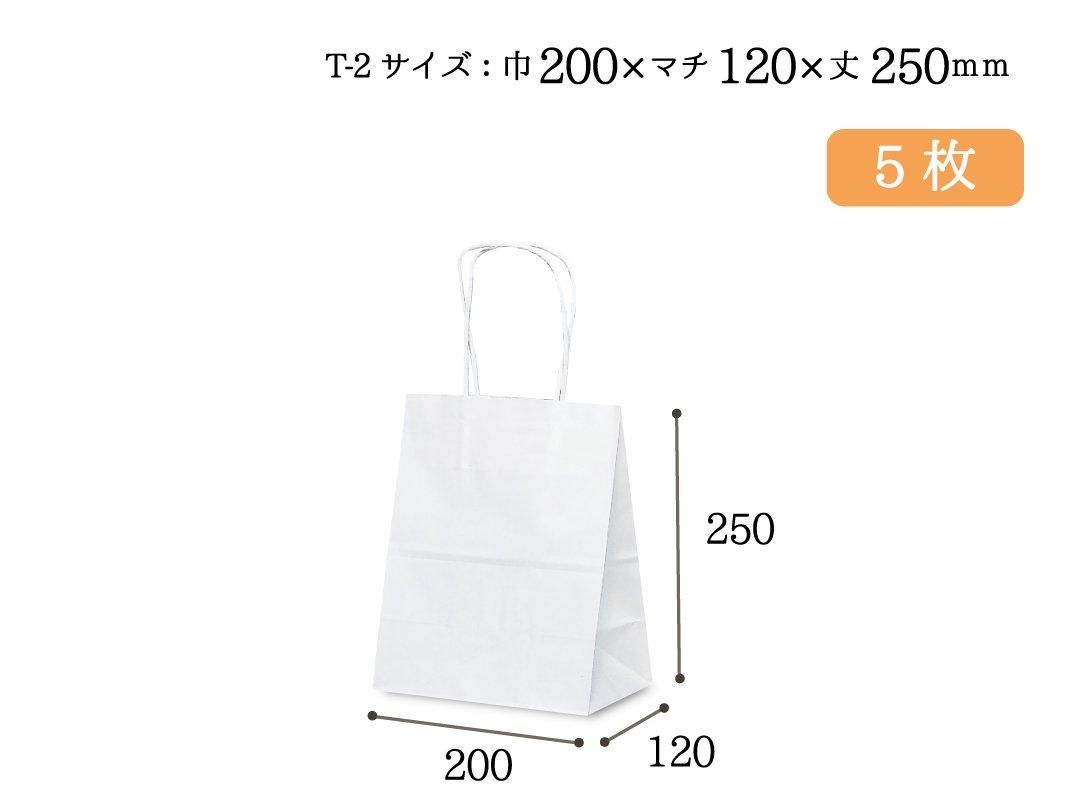 紙手提袋 T-2(白) 5枚
