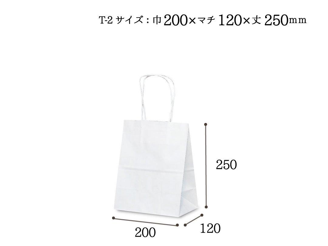 紙袋 T-2 白無地
