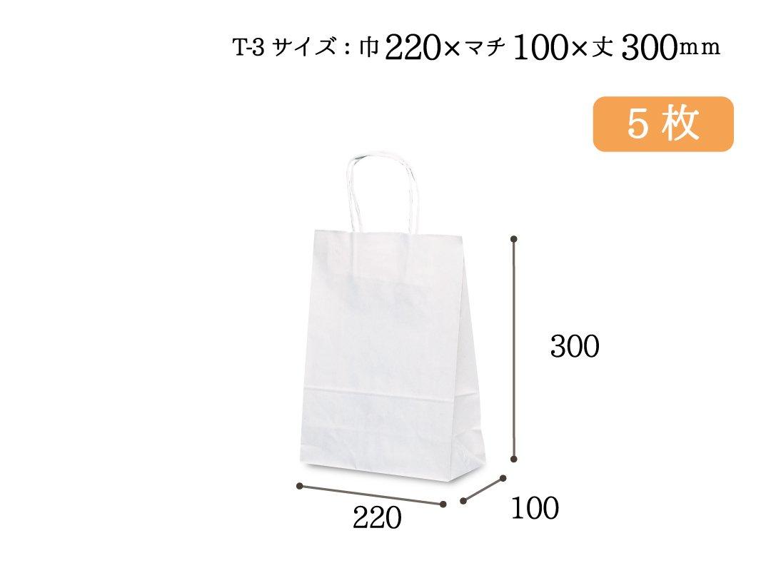 紙手提袋 T-3(白) 5枚