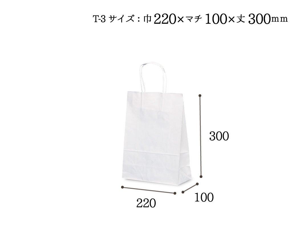 紙袋 T-3 白無地