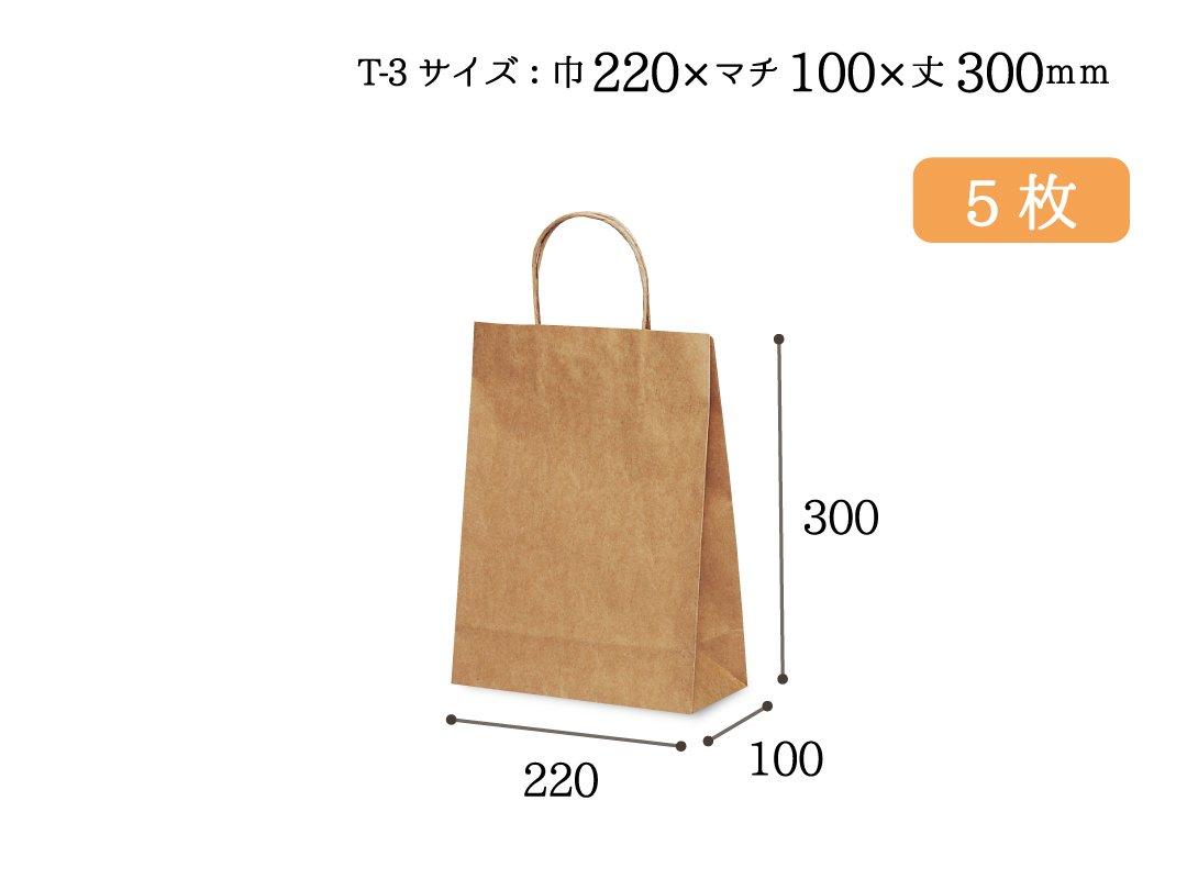 紙手提袋 T-3(茶) 5枚