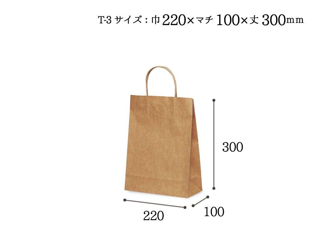 紙手提袋 T-3(茶) 25枚