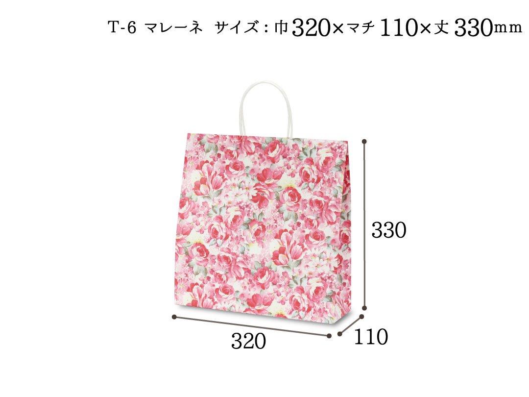 紙袋 T-6 マレーネ