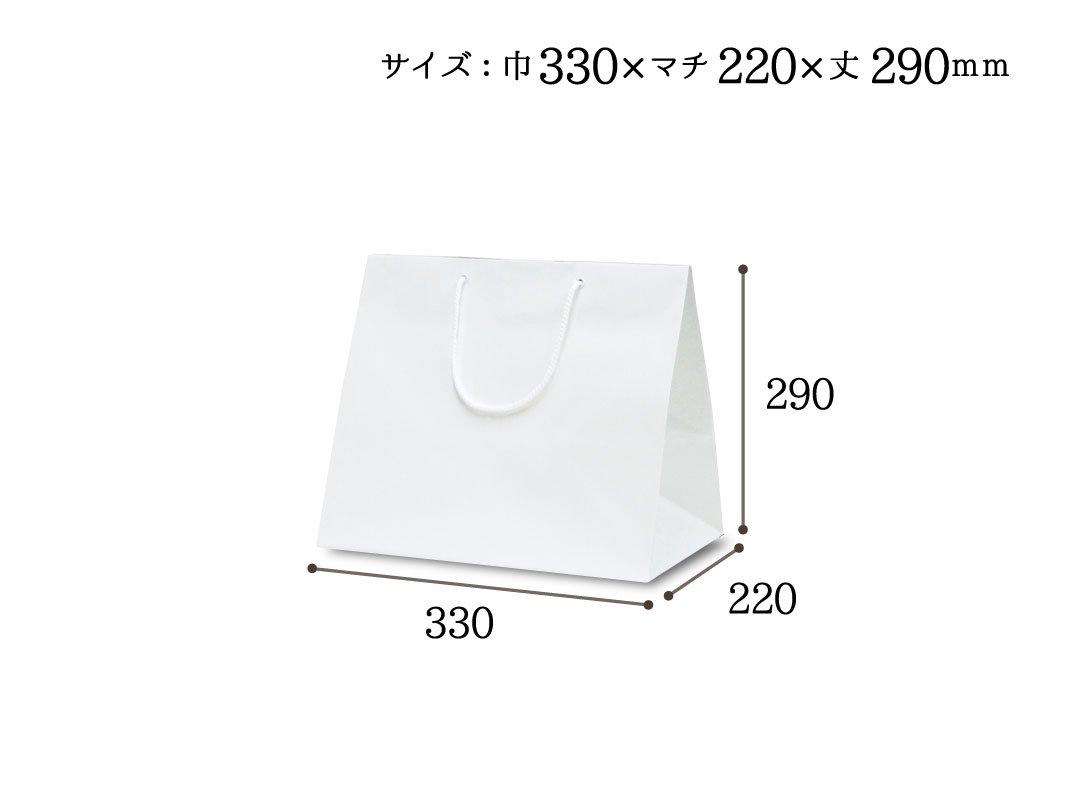 紙手提袋 ファインバッグ220ワイド 10枚