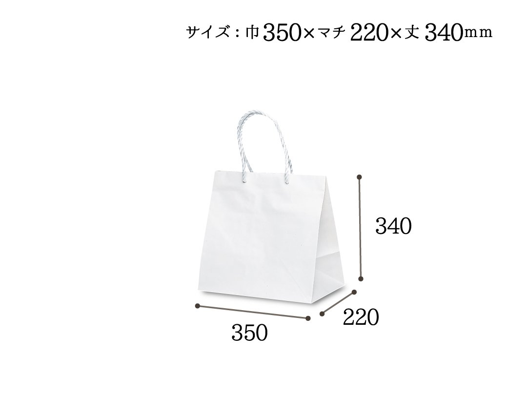 紙手提袋 グレートバッグ No,5 10枚