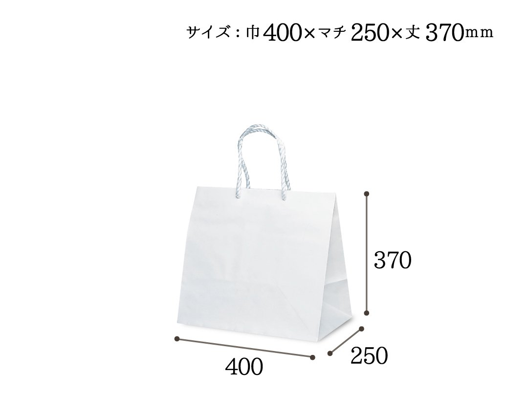 紙手提袋 グレートバッグ No,10 10枚