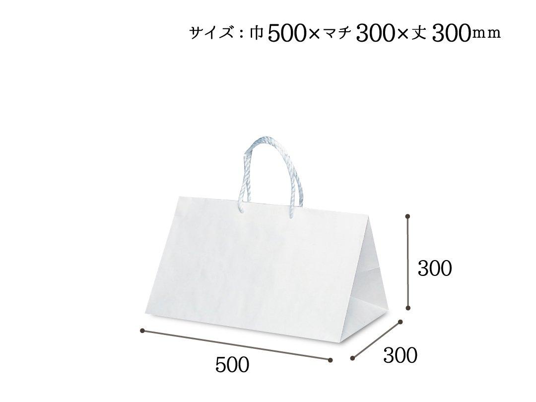 紙手提袋 グレートバッグ No,14 10枚