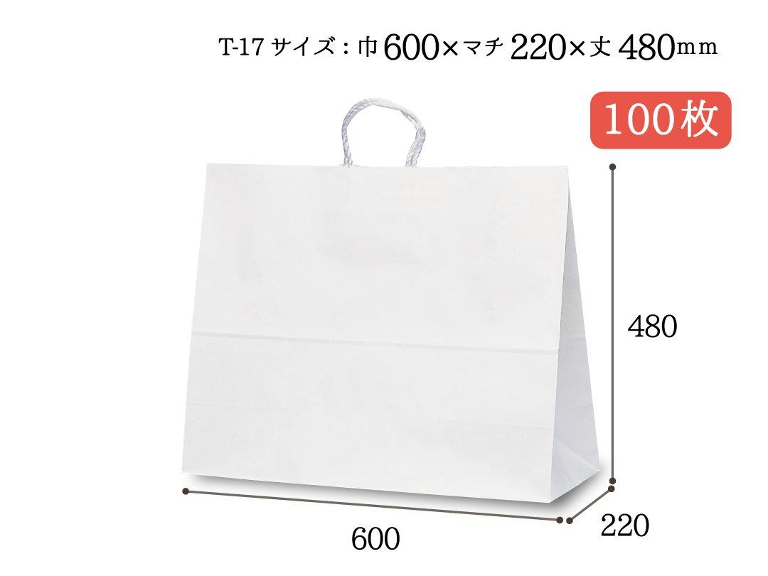 紙袋 PP紐 T-17(白) 100枚