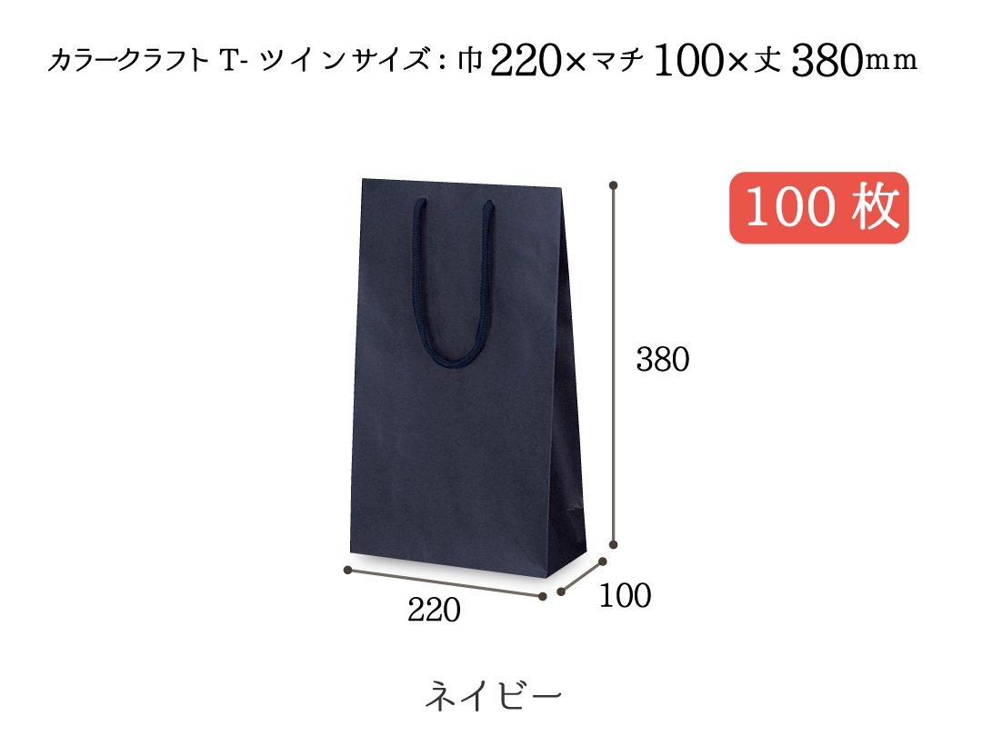 紙袋 T-ツイン(ネイビー) 100枚