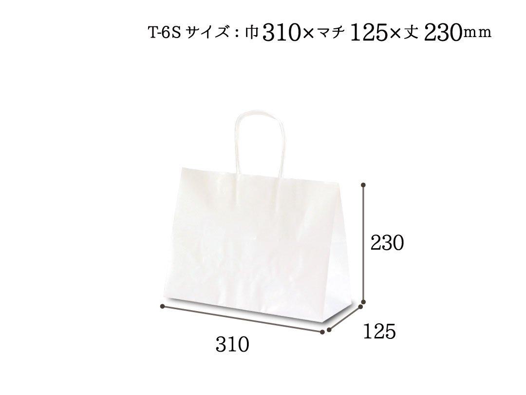 紙袋 T-6S 白無地