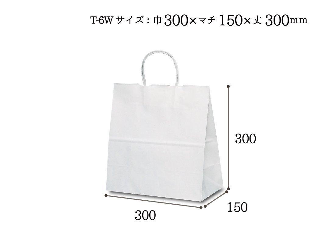 紙袋 T-6W 白無地
