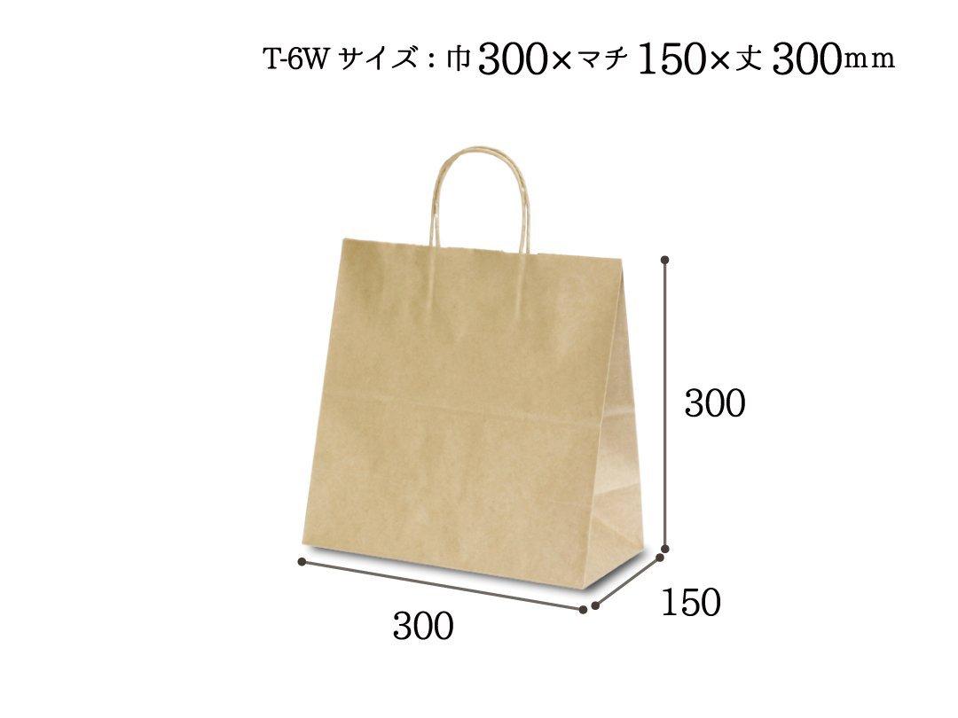 紙袋 T-6W 茶無地