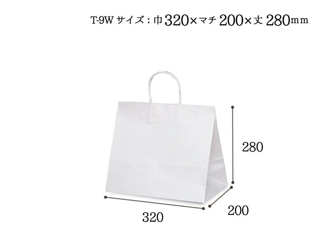 紙袋 T-9W 白無地
