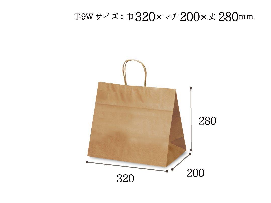 紙袋 T-9W 茶無地