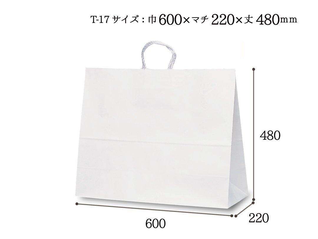 紙袋 T-17 白無地(持ち手PP紐)