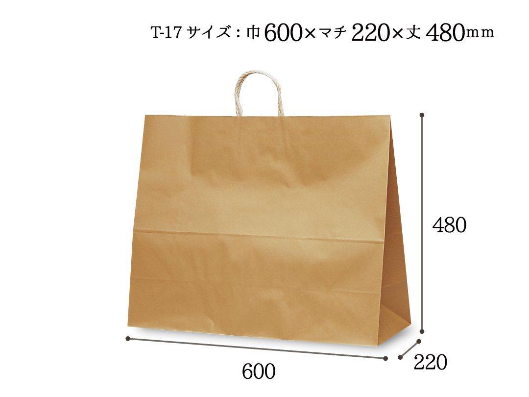 紙袋 T-17 茶無地(持ち手PP紐)
