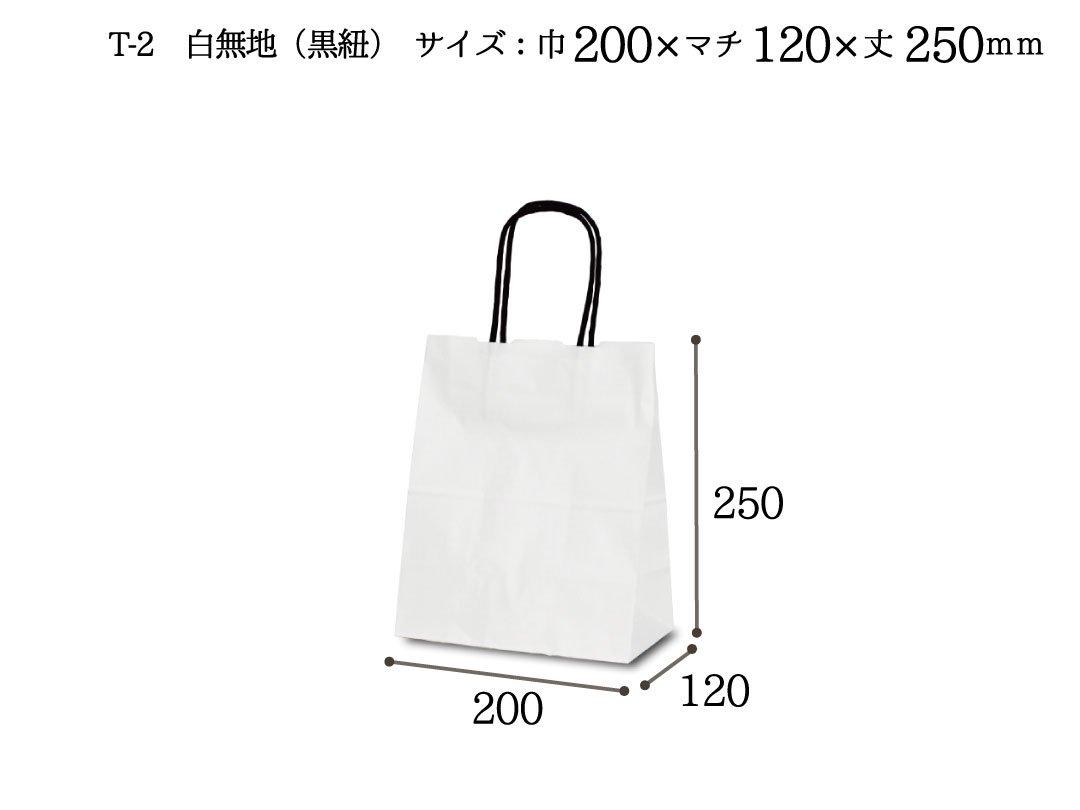 紙袋 T-2 白無地(黒紐)