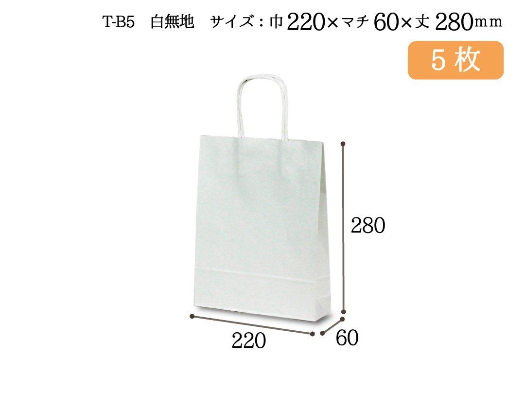 紙手提袋 T-B5(白) 5枚