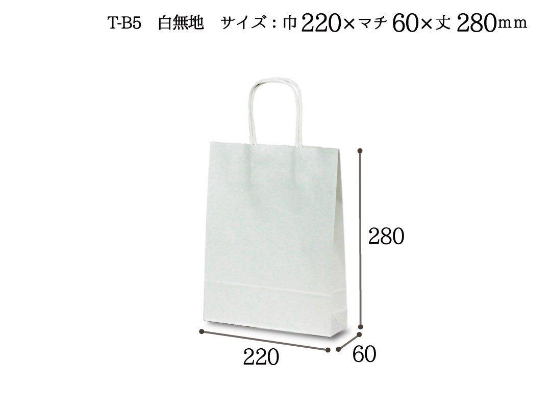 紙手提袋 T-B5(白) 25枚