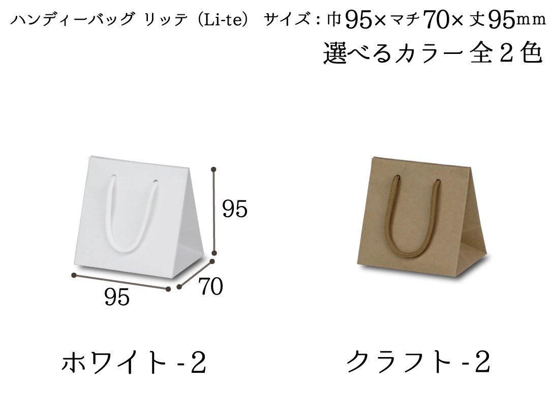 ハンディーバッグ リッテ(Li-te)−2 10枚