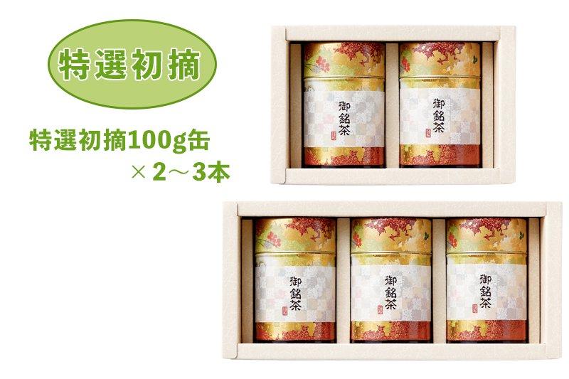 贈答用お茶(静岡茶・牧之原茶)特選初摘100g缶×2~3本