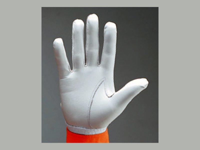 トンボレックス R-MAX1 羊革製手袋【画像2】