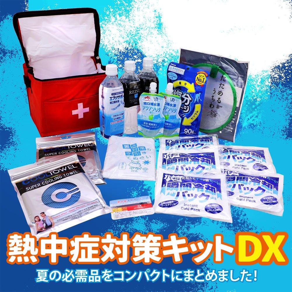 熱中症対策キットDX(デラックス) クーラーバッグに入った応急処置セット 熱中症対策グッズ【画像2】