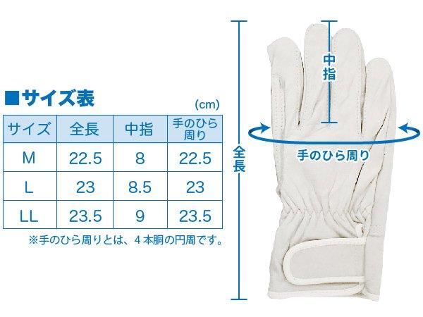 訓練用牛革手袋 廉価版 アテ革付 705【画像7】