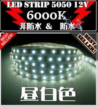 6000K LEDテープライト5050/昼白色1m~