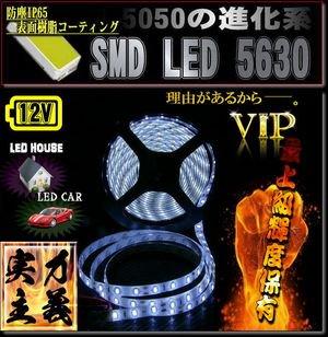 IP65 防滴6500K LEDテープライト5630/300led/5M