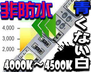 4000K 自然白 LEDテープ5050/ 非防水