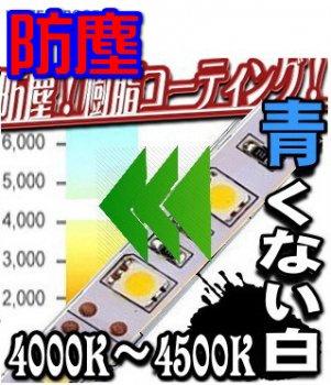 4000K IP65 防塵「LEDテープライト  5050」 5M
