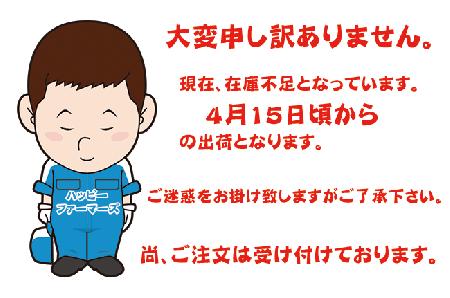 武雄育ちレモングラス3g入り ティーバック100袋