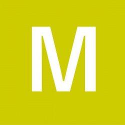 白樺ボトルクーラー M (typeB)