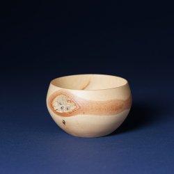 盆栽 白樺丸鉢(中)
