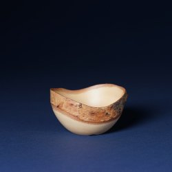盆栽 白樺波鉢(小)